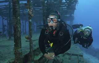 two-divers-swimming-along-the-remaining-structure